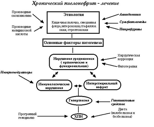 лечение пиелонефрита pdf